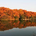 そよかぜ霊園の秋の風景