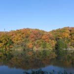 晩秋のそよかぜ霊園