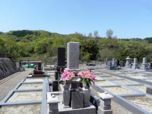 新緑とお墓
