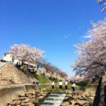 苑内からの風景(4月初旬)