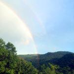 春日山原始林と虹