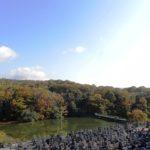 そよかぜ霊園周辺 晩秋の風景