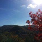 ならやま浄苑 12月の風景
