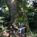 ならやま浄苑 近隣施設のご案内「奈良豆比古神社」