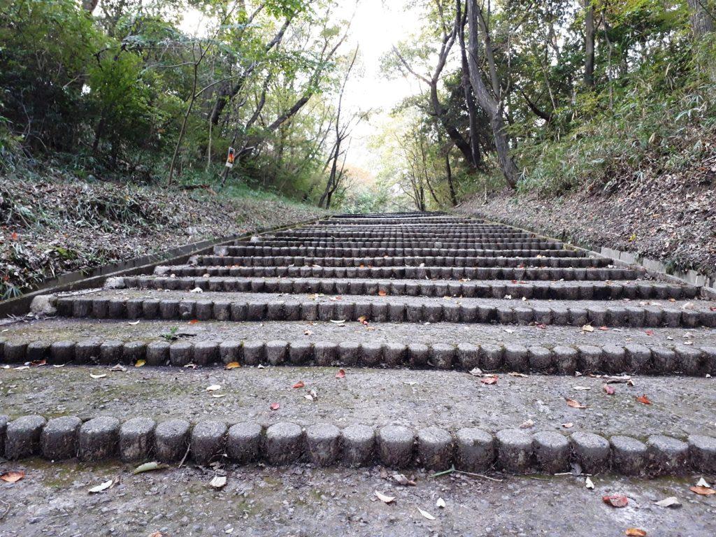 どんずるぼう階段