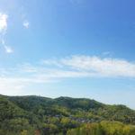 新緑の風景