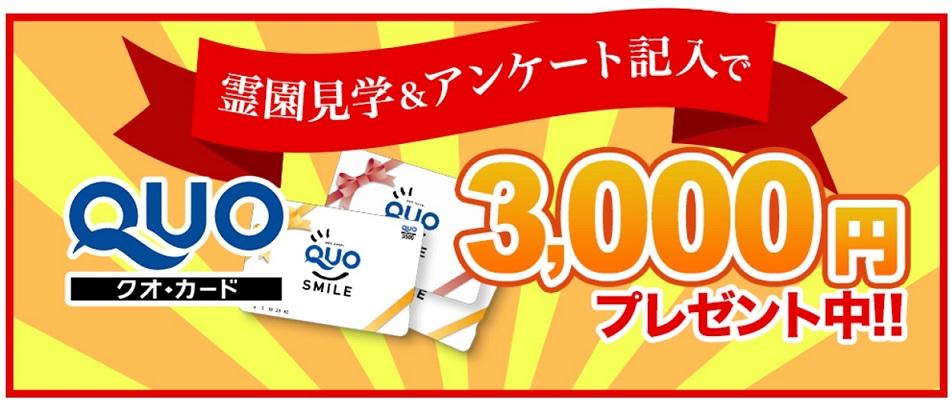 QUOカードキャンペーンロゴ