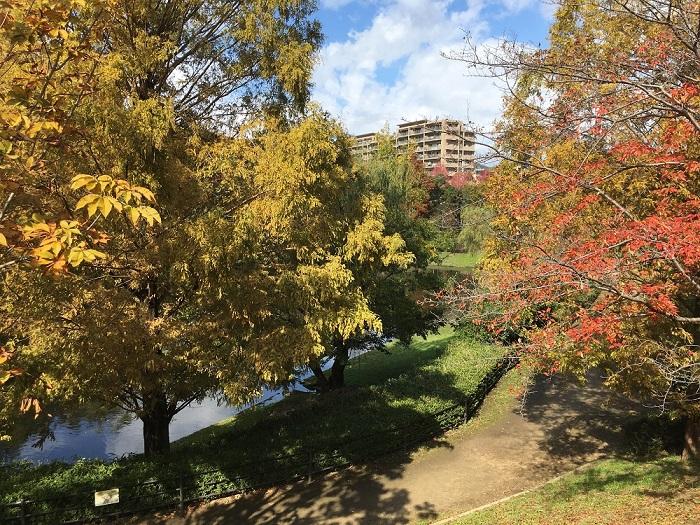 上の池公園 2