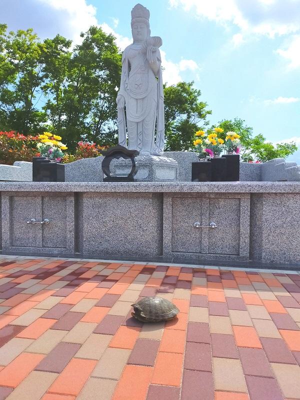 永代供養墓前の亀