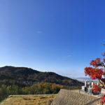ならやま浄苑 秋の風景